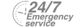 24/7 Emergency Service Pest Control in Highbury, N5. Call Now! 020 8166 9746